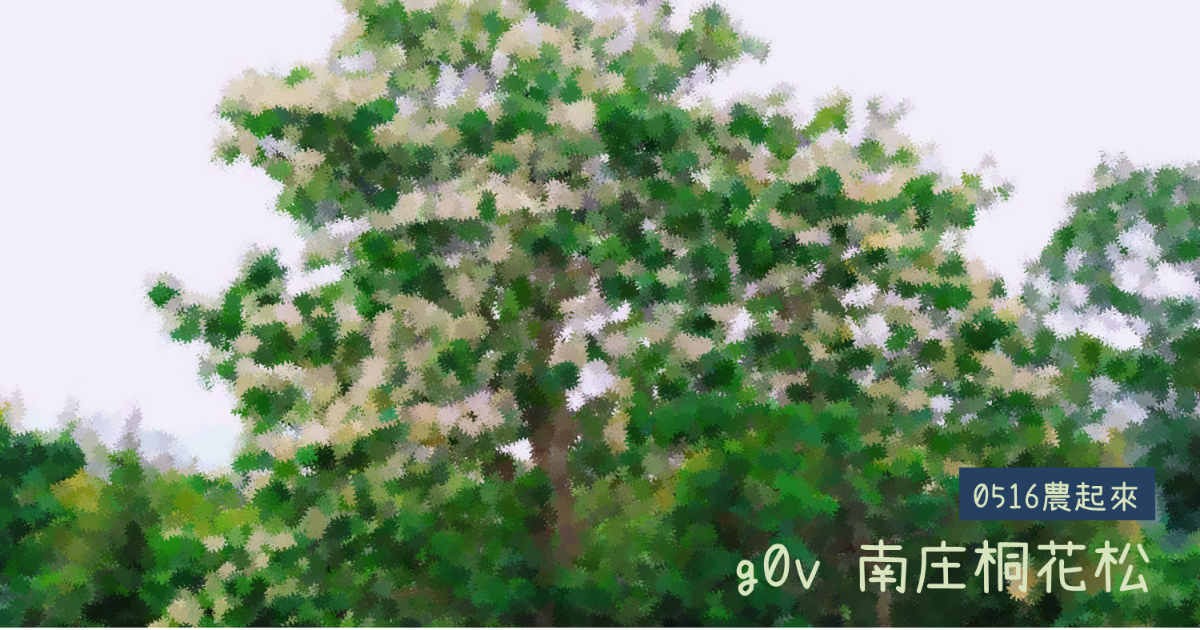Event cover image for g0v 南庄桐花松