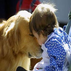 Dog child promote