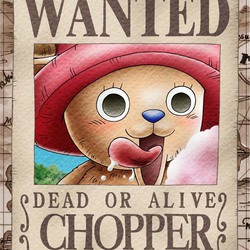Chopper promote