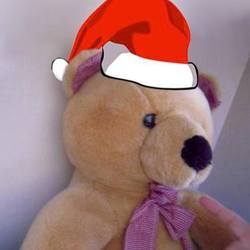 Bear with xmas hat otra direccion promote