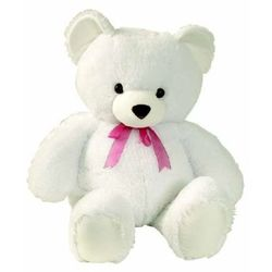 Teddy1 promote